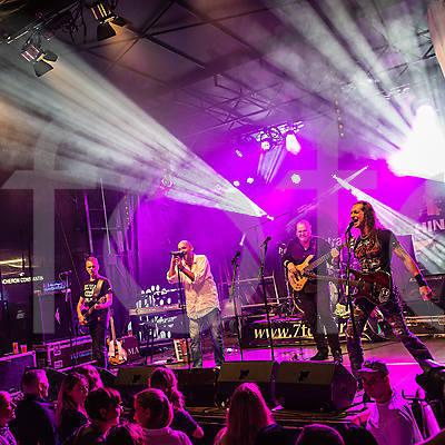 2015 Luzernerfest
